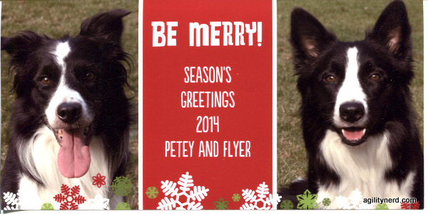 Be Merry! Season's Greetings 2014 Petey and Flyer