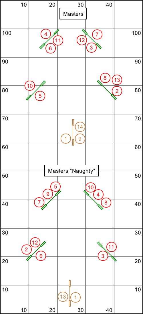 Two Christmas tree shaped agility courses