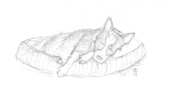 Sketch of Milo Sleeping